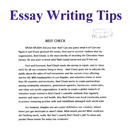 essay written by students